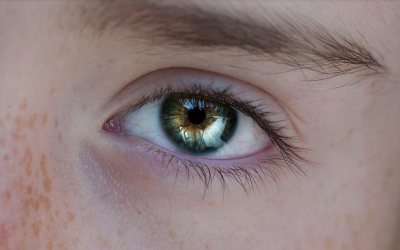 Changing pupil size indicates social abilities in autism