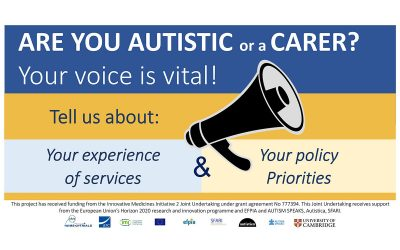 What services do autistic people want? What improvements are needed? Time to let policymakers know.